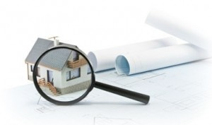 dorchester-mold-inspections